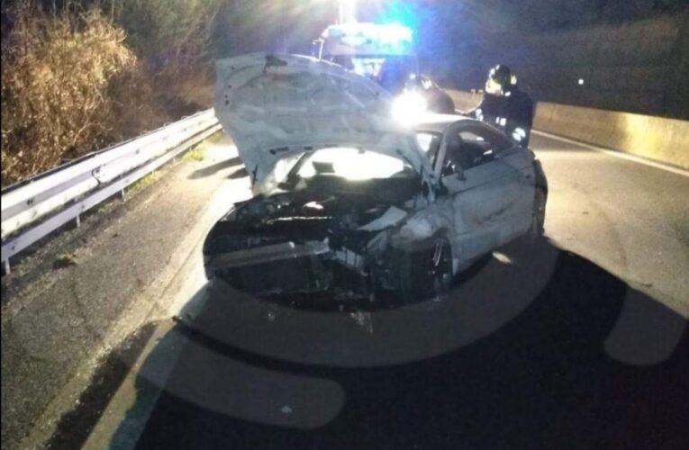 Umbria, cinghiali sulla E45 a Città di Castello: cinque feriti