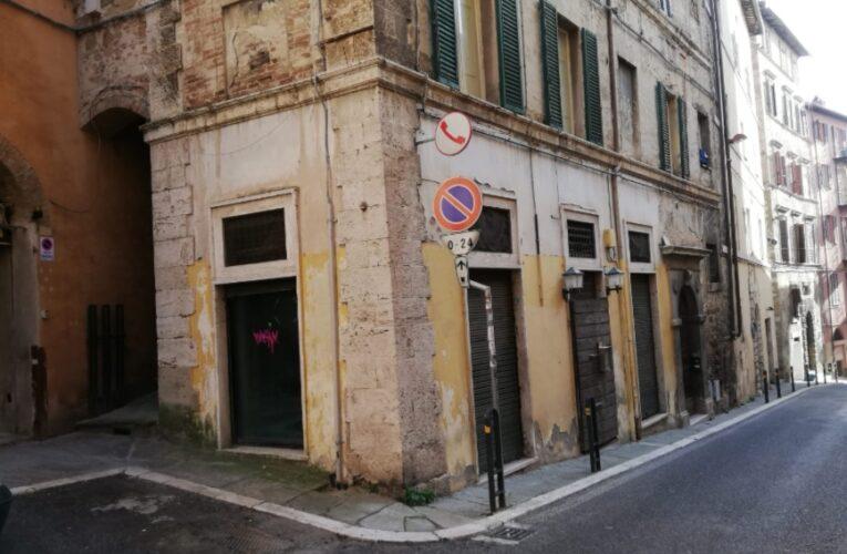 Perugia, riapre lo Zoologico: le immagini di com'è e quello che diventa