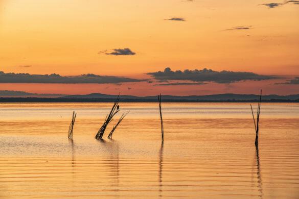 Il Museo della Pesca e del Lago Trasimeno